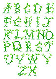 Plant alphabet letters