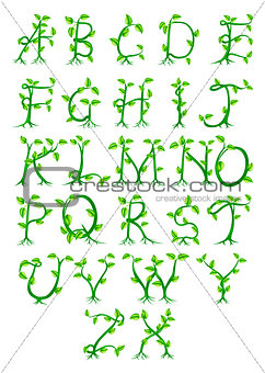 Image 5157031 Plant Alphabet Letters From Crestock Stock Photos