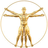 vitruvian
