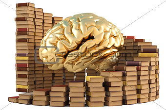 brain with books