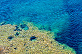 closeup of a tropical blue sea water