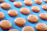 Macaroons on a baking sheet.