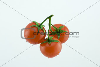 three small cherry tomatoes on a branch