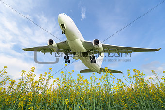 Aircraft takes off over the meadow