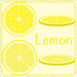 Citrus slices vector lemon