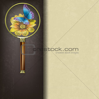 abstract background with magnifying glass and butterfly