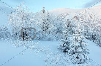 Predawn winter mountain landscape