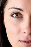Portrait of half face of a beautiful woman with green eye