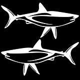 Shark,  black and white outline.