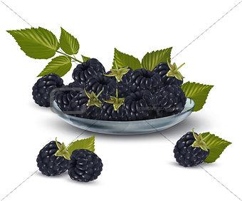 Fresh blackberries with leaves in glass bowl Vector illustration