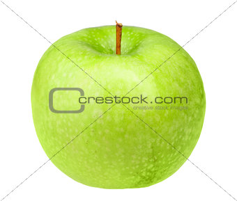 Single fresh green apple