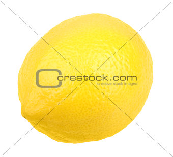One fresh yellow lemon
