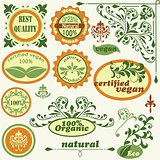 vector label and  vintage floral  design elements