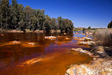 river Tinto by Niebla (Huelva)