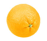 Fresh fruit of orange