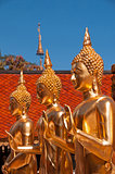Doi Suteph3