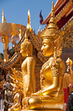Doi Suteph4