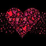 Heart a bird3