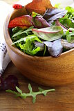 mix salad (arugula, iceberg, red beet) in a bowl