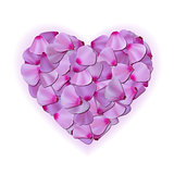 Pink heart of petals on white background.