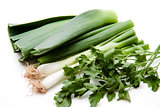 Leek and parsley