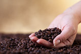 Fresh roasted coffee beans in woman hands