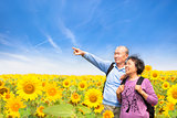 happy senior couple standing in the sunflower garden