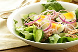 French salad Nicoise - with tuna and egg