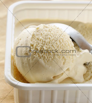 creamy vanilla ice cream in a white cup