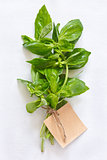 Basil.