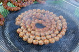 sausages circular