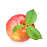 Red apple with three green leaf