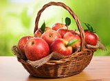 Basket of fruit.