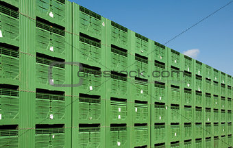 Green Fruit packing crates