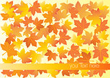 Vector illustration of autumn background with place for your text
