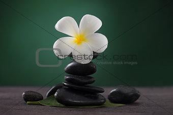 Stacked hot stones or massage stones and frangipani
