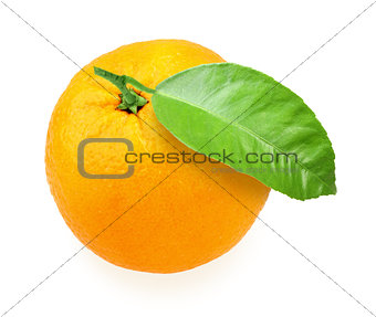 Orange-fruit with green leaf