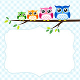owl family at tree spring