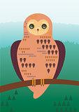 Misterious Owl