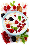 healthy breakfast: bowl of cerial with yogurt or milk