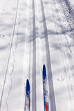 Ski touring and ski tracks in Winter