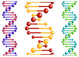 DNA molecule with elements