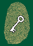 Fingerprint and security key