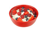 Yogurt with Fresh Berries Isolated