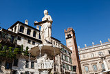 Fountain and Statue of Madonna on Piazza delle Erbe in Verona, V