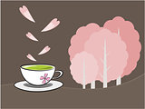 Tea and sakura flower illustration