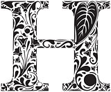 Floral H