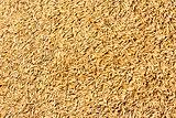 Jasmine rice seed texture