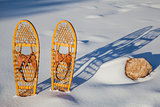 Bear Paw classic snowshoes