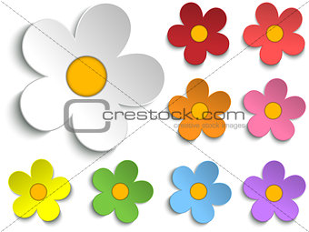 Beautiful Spring Flowers Collection Set of 9